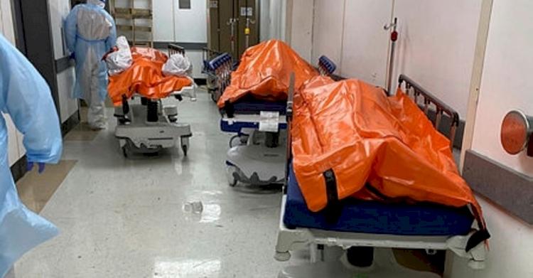 ABD'de COVID-19'dan ölenlerin sayısı 411 bini geçti
