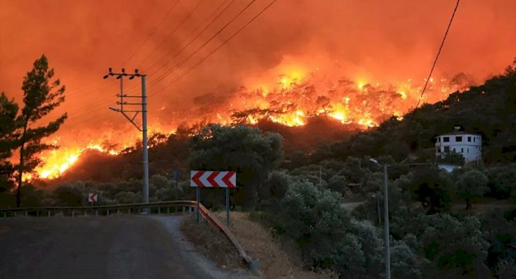 Türkiye'de 4 ilde 9 yangınla mücadele sürüyor
