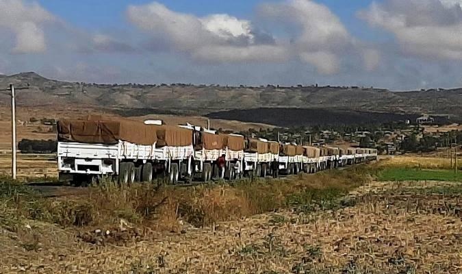 Etiyopya, Batı ülkelerinin Tigray bölgesine 'yardım koridoru' teklifini reddetti