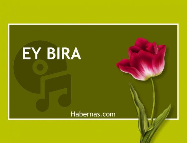 EY BIRA