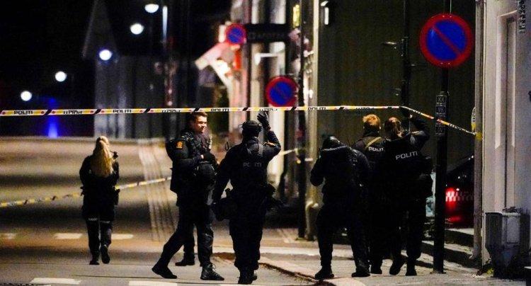 Norveç'te oklu saldırıda 5 kişi hayatını kaybetti